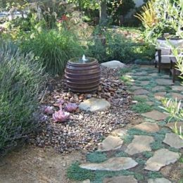 using_dumpsters_sustainable_landscaping_1