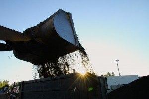 Green waste, Yuba City, CA