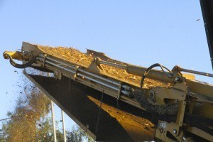 Wood chips, Lincoln, CA